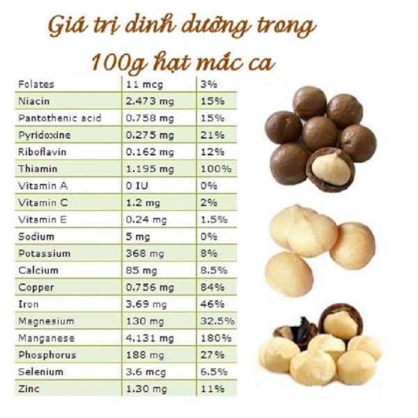 Hạt macca chứa một nguồn dưỡng chất dồi dào