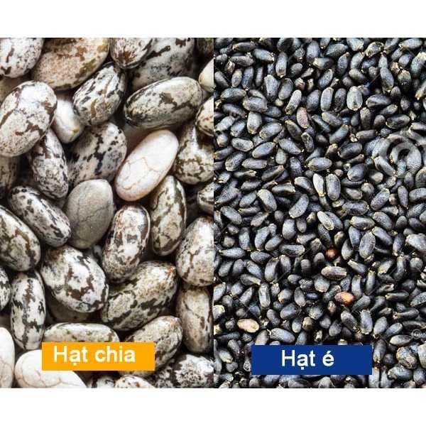 so sánh hạt chia và hạt é