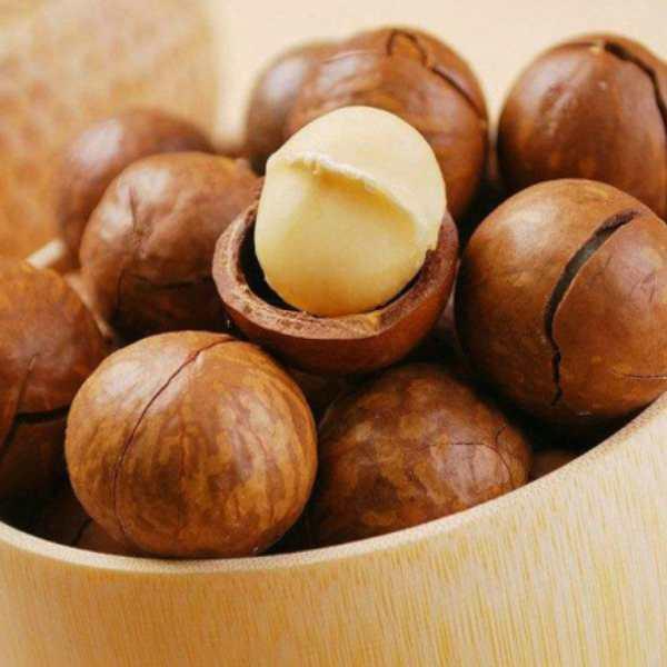 hạt macca Mourad's dinh dưỡng dồi dào