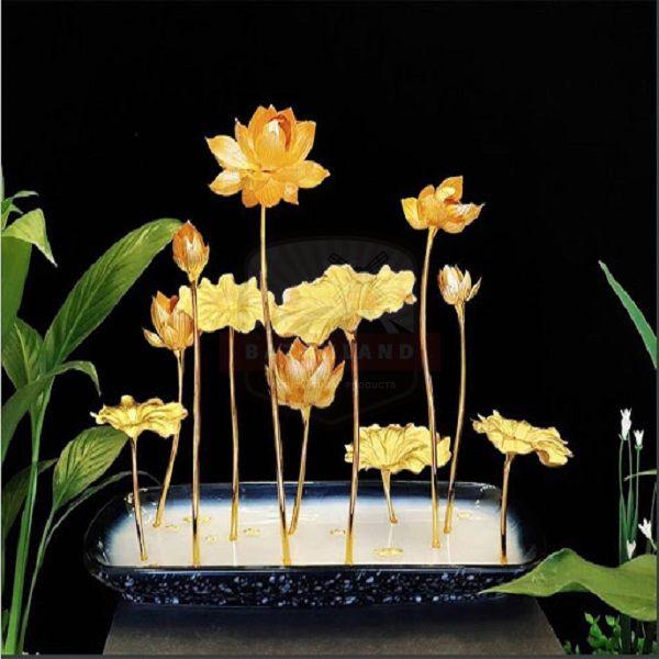 Chậu hoa sen vàng tặng tết